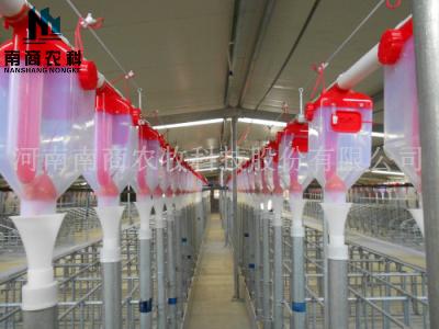 牧原鐘祥欄位、料線、產床安裝現場