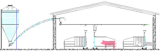 高效化猪场管理理念
