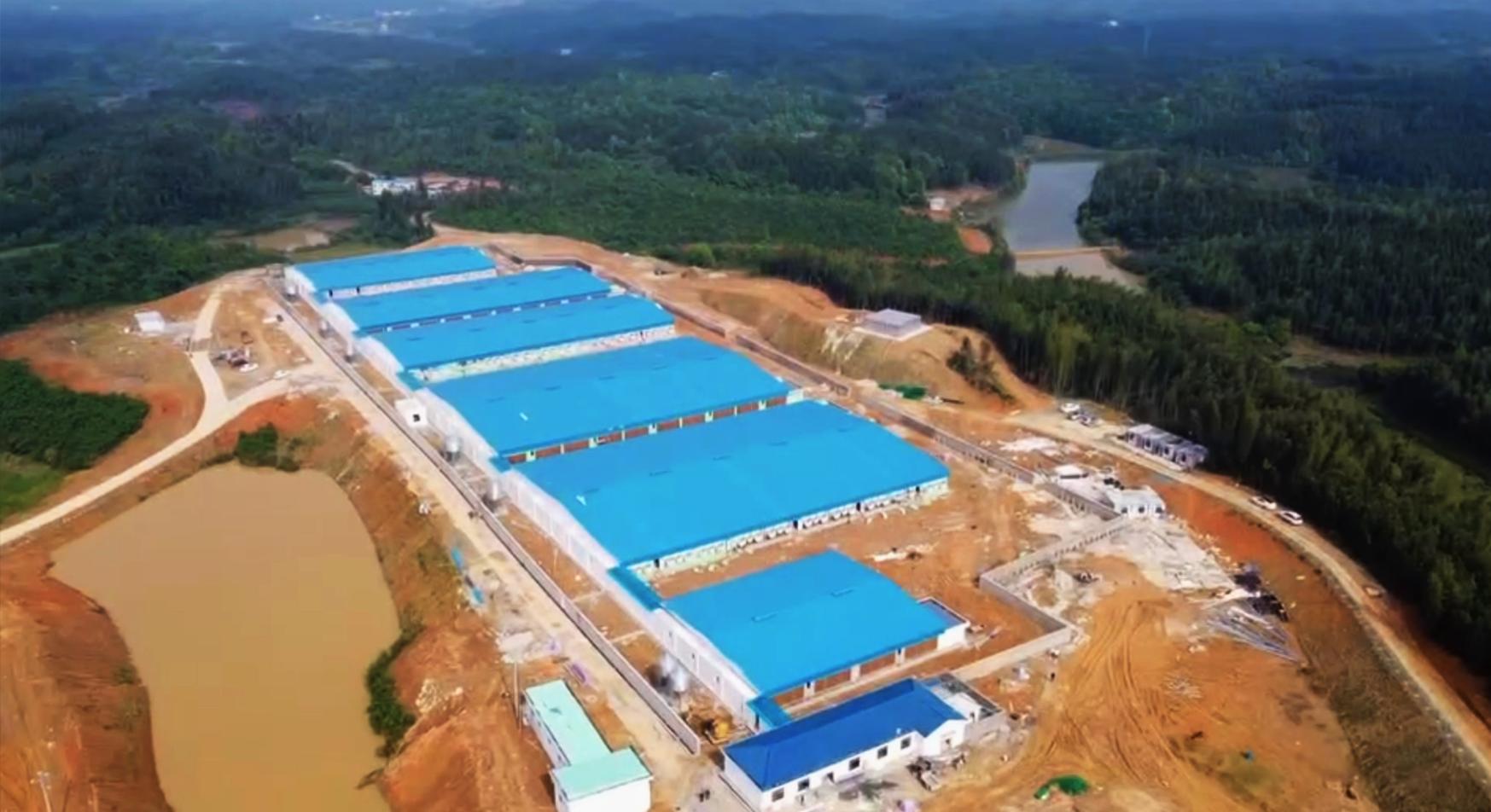 南商农科助力湖南宏岳2400头母猪场项目顺利验收